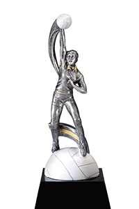 Female Volleyball Trophy | Laserworx Custom Engraving