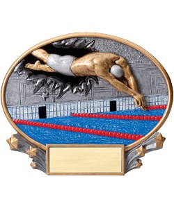 Swimming Plaque Male | Laserworx Custom Engraving