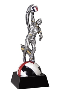 Men Volleyball Trophy | Laserworx Custom Engraving